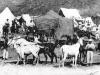 patrimoine-taourirt-camp-caravane