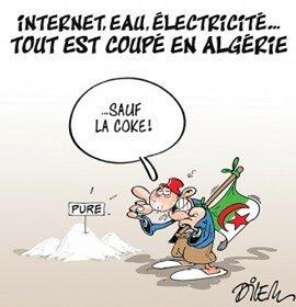L'Algérie est bel et bien impliquée jusqu'au cou dans la production et le trafic de drogues dures