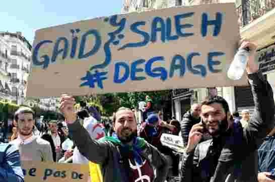 الجزائر: انتخابات 1+5