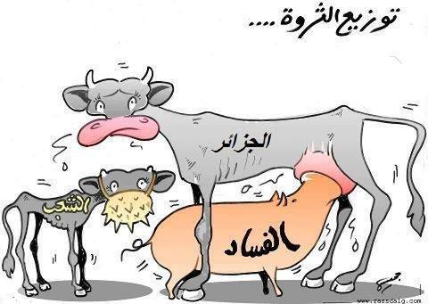 الجزائر على حافة الانهيار …