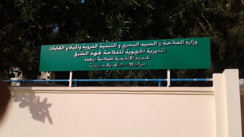 Communiqué syndical à propos du centre d'estivage du secteur agricole à Saïdia