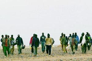 ضربة موجعة من » الديستي » لمافيا تهريب البشر بالناظور …توقيف ازيد من 185 مهاجرا سريا