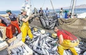 L'arme fatale serait d'interdire aux bateaux de pêche espagnols d'entrer dans les eaux territoriales marocaines